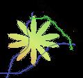 Logo St-Urbain