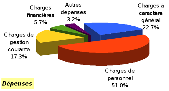 CA 2015 fonct dépenses